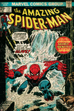 Marvel Comics Retro: The Amazing Spider-Man Comic Book Cover No.151, Flooding (aged) Poster