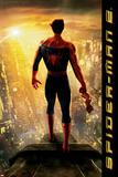 Spider-Man Movie 3: Spider-Man Posters