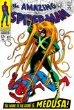 The Amazing Spider-Man No.62 Cover: Spider-Man and Medusa Fighting Planscher av John