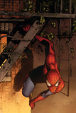 Marvel Adventures Spider-Man No.41 Cover: Spider-Man Photo by Sean Murphy
