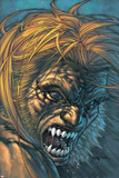 Weapon X No.28 Cover: Sabretooth Fighting Prints