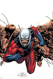 Marvel Adventures Super Heroes No.6 Cover: Ant-Man Pôsters por Clayton Henry