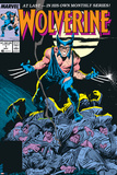 Wolverine No.1 Cover: Wolverine Prints by John Buscema