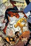 Marvel Adventures Spider-Man No.24: Spider-Man and Absorbing Man Fighting Prints by Rob Disalvo