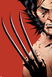 Wolverine No.16 Cover: Wolverine Posters by Jae Lee