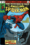 Amazing Spider-Man No.200 Cover: Spider-Man Fighting Prints