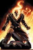 Shadowland No.5 Cover: Ghost Rider and Daredevil Fighting Poster av John Cassaday