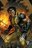 Wolverine No.304 Cover: Wolverine Standing Photo by Dale Keown