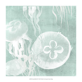 Spa Jellyfish II Giclee Print by Grace Popp