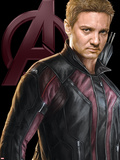 The Avengers: Age of Ultron - Hawkeye Prints
