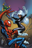 Marvel Adventures Spider-Man No.22 Cover: Spider-Man, Black Cat, and Mandarin Posters by Mike Choi