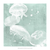 Spa Jellyfish III Giclee Print by Grace Popp