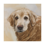 Chelsea Golden Retriever Prints by Edie Fagan