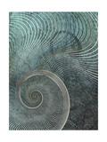 Surround I Premium Giclee Print by James Burghardt