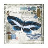 Butterfly Artifact III Print by Alan Hopfensperger