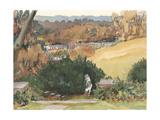 Watercolor Garden III Prints by Dianne Miller