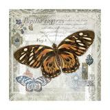 Butterfly Artifact I Poster by Alan Hopfensperger