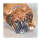 Baillie Boxer Schilderij van Edie Fagan