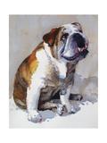 Major Wembly E. Bull Dog Premium Giclee Print by Edie Fagan