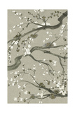 Neutral Cherry Blossoms II Prints by Grace Popp