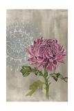 Bohemian Botanical I Prints by Naomi McCavitt