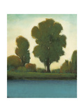 Quiet Moment II Posters by Tim