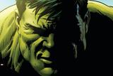 Avengers Assemble Panel Featuring Hulk Print