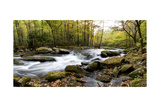 Over Flow Panorama Prints by Danny Head