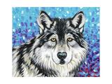 Grey Wolf II Prints by Carolee Vitaletti