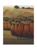 On the Ridge II Prints by Tim