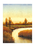 Spring Water I Prints by Tim