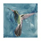 Watercolor Hummingbird II Art by Grace Popp