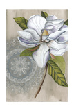 Bohemian Botanical IV Posters by Naomi McCavitt