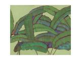 Kona Garden II Premium Giclee Print by Jodi Fuchs