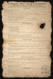 Justin Jenkins - Beer Pong Constitution - Reprodüksiyon