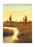 Spring Water II Posters by Tim