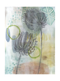 Seed Pod Composition IV Print by Naomi McCavitt