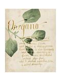 Herb Study III Prints by Grace Popp