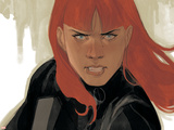 Avengers Assemble Panel Featuring Black Widow Prints