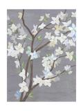 Cherry Blossom Haze I Premium Giclee Print by Grace Popp