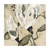 Flower Pods II Prints by Jennifer Goldberger