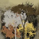 Forest Glow II Giclee Print by Ken Hurd