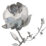 Winter Floral I Giclee Print by Sandra Jacobs