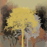 Forest Glow I Giclee Print by Ken Hurd