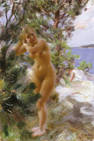 After the Bath Giclee Print by Anders Zorn