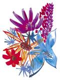 Tropical Summer III Giclee Print by Katrien Soeffers
