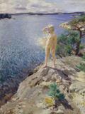 In the Skerries Giclee Print by Anders Zorn