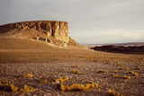 Atacama Desert Giclee Print by Chris Simpson