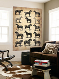 Vintage Horses Collection Wall Mural by  NaxArt