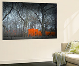 Central Park Wall Mural by  NaxArt